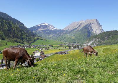 Fernblick-Schoppernau-Dorf-Sommer-02