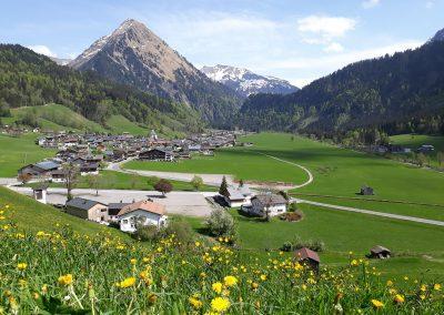 Fernblick-Schoppernau-Dorf-Sommer-03