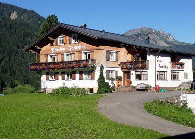 Fernblick-Schoppernau-Haus-Sommer-02
