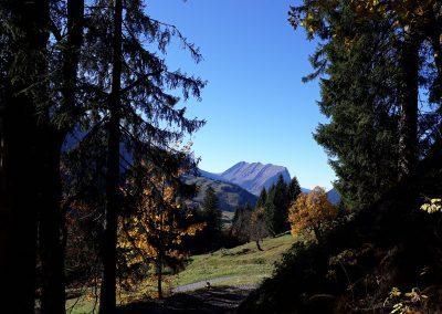 Fernblick-Schoppernau-kanisfluh