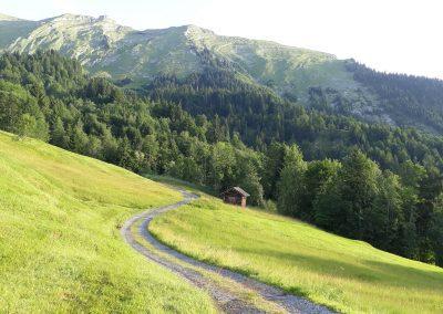 Fernblick-Schoppernau-kanisfluh-Wanderweg